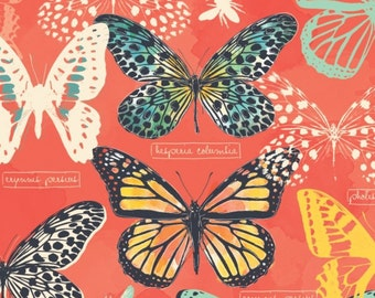 Butterfly, butterflies, Monarch Grove, 26170502, col 01, Camelot Fabrics, 100% Cotton