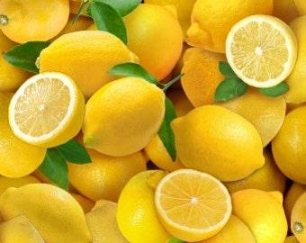 Lemons, 483, Elizabeth's Studio, cotton, cotton quilt, cotton designer