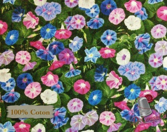 Flowers, Morning Glory, Black Background, 540, Landscape Medley, Elizabeth's Studio, 100% Cotton, (Reg 2.99-17.99)
