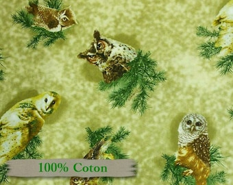Giordano, Owl, 100% Cotton,