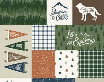 "Panel, 24""X44"", Animals fabric, #10727 GREEN - Adventure is Calling of Riley Blake Designs"