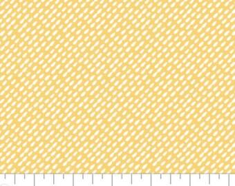 Wish for Rain, 89191004, col 02, Camelot Fabrics, 100% Cotton