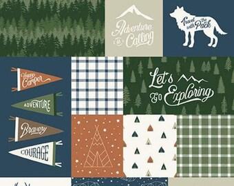 "Panel, 24""X44"", Animals fabric, #10727 NAVY - Adventure is Calling of Riley Blake Designs"