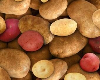 Potatoes red, 387, Elizabeth's Studio, cotton, cotton quilt, cotton designer