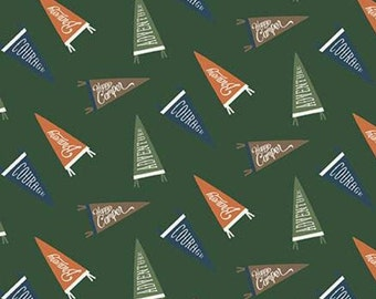 Adventure is Calling of Riley Blake Designs, GREEN, #10723 , fabric, cotton, quilt cotton