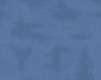 Denim, Shabby, C605, Riley Blake, cotton, cotton quilt, cotton designer, (Reg 3.76-21.91)