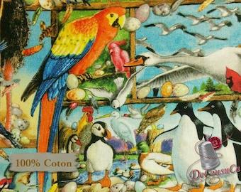 Exotic Birds, 7006, Elizabeth's Studio, multiple quantity cut in one piece, 100% Cotton