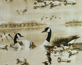 Flying Geese, Hautman Courtesy, 1649, 26712, cotton, cotton quilt, cotton designer