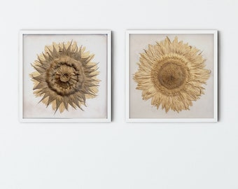 Set of 2 Box framed Sunflower Tiles, Day and Night botanical bas-relief.