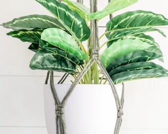 Macrame Plant Hanger - Sage