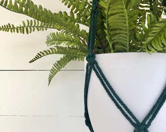 Moss Macrame Plant Hanger with 4mm Cotton Cord