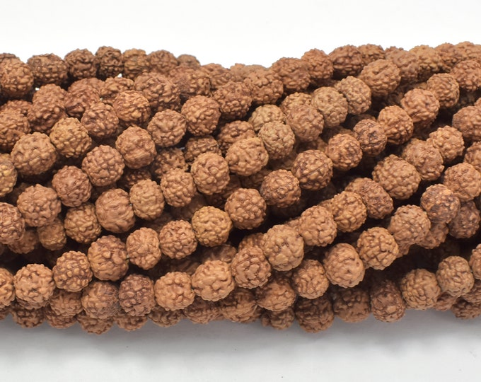Rudraksha Beads, 6.5mm-7mm Round Beads, 26-28 Inch, Full strand, Approx 108 Beads, Hole 0.6mm, Mala Beads (011731003)