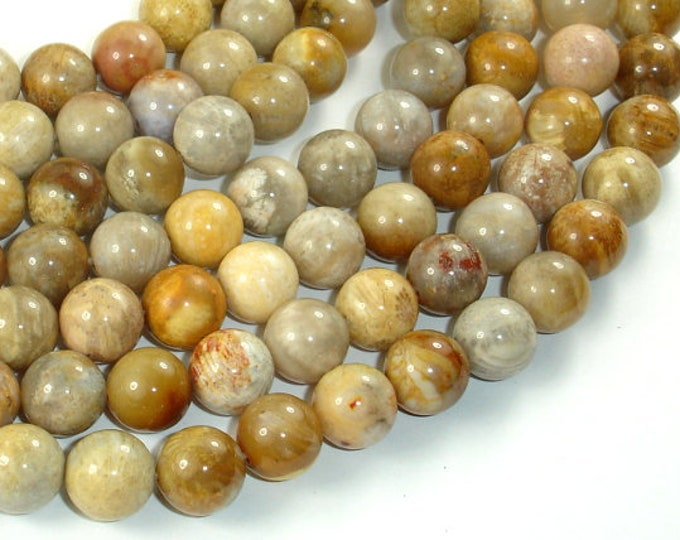 Fossil Coral Beads, 10mm (10.5mm) Round Beads, 15.5 Inch, Full strand, Approx 38 beads, Hole 1mm (226054010)