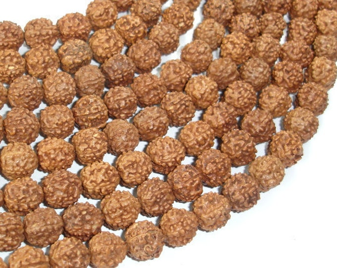 Rudraksha Beads, 9mm-9.5mm Round Beads, 36-38 Inch, Full stand, 108 Beads, Mala Beads (011731004)