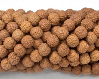 Rudraksha Beads, 9mm-9.5mm Round Beads, 34-37 Inch, Full stand, 114 Beads, Mala Beads (011731006)