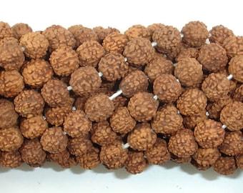 Rudraksha Beads, 7mm - 8mm Round Beads, 31-34 Inch, Full strand, 108 Beads, Mala Beads (011731001)
