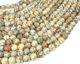 Fossil Jasper Beads, 8mm Round Beads, 15.5 Inch, Full strand, Approx 48 beads, Hole 1 mm, A quality (220054003)