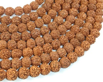 Rudraksha Beads, 9.5mm-10.5mm Round Beads, Approx 40-42 Inch, Full strand, Approx108 Beads, Hole 0.8mm (011731002)