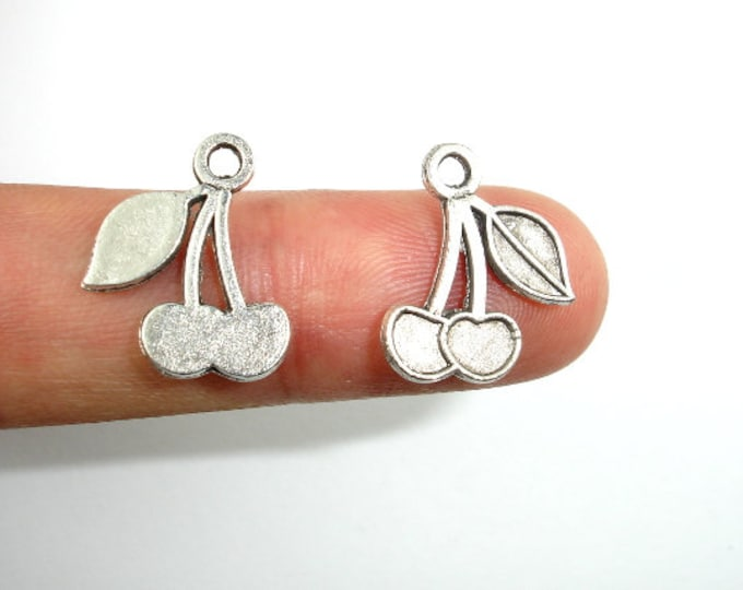 Cherry Charms, Zinc Alloy, Antique Silver Tone,13x16 mm, 30 pcs, Hole 2 mm (006873066)