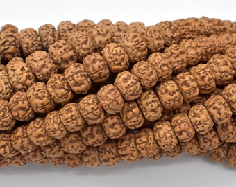Rudraksha Beads, Approx 6x9mm Rondelle Beads, 30 Inch, Full strand, Approx 114 Beads, Hole 1mm, Mala Beads (011731005)