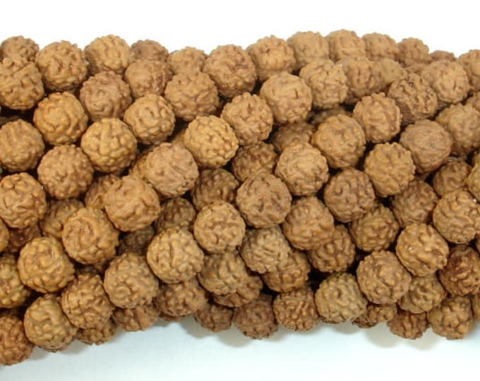 Rudraksha Beads, 6.5mm-7mm Round Beads, 26-28 Inch, Full strand, Approx 114 Beads, Hole 0.7mm, Mala Beads (011731003)
