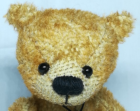 Paul the Bear