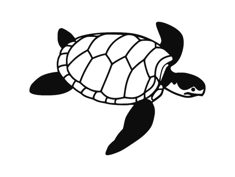 Turtle svg Sea Turtles Clip Art svg Files Sea Turtle ...