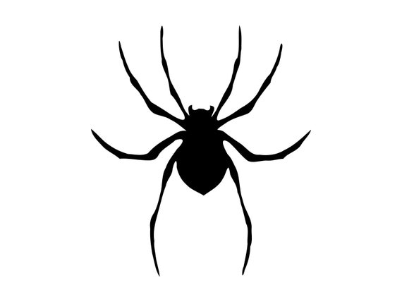 spider svg halloween svg scary spider spooky halloween svg cut etsy