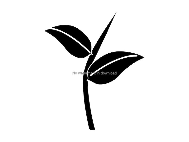 Leaves Svg Png Dxf Leaves Svg Cut File Leaves Png Clipart Leaves Clipart Leaves Dxf File Leaves Svg Design