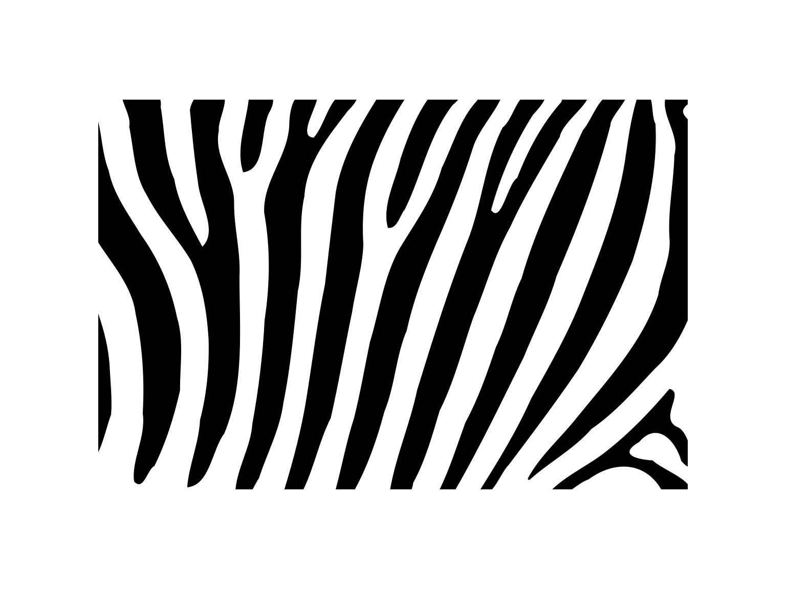 Zebra Pattern Cool Decoration