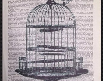 Vintage Birdcage print Original Dictionary Print Book Page Wall Art Picture gift