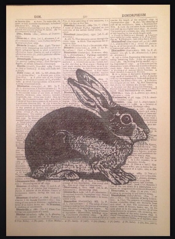 Vintage Hare Rabbit Print Picture Dictionary Cool Wall Art Animal In Clothes