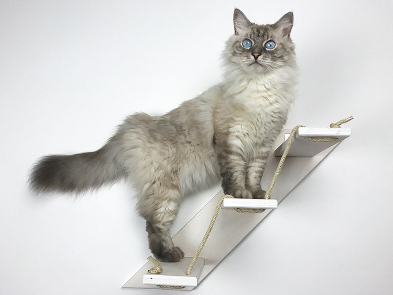 Cat stair with 3 or 5 steps  Goes up Right  Cat furniture  image 0