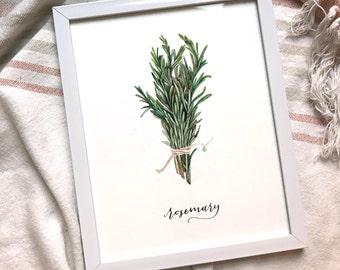 8x10 Rosemary