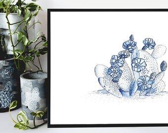 Art Print - Blue Cactus