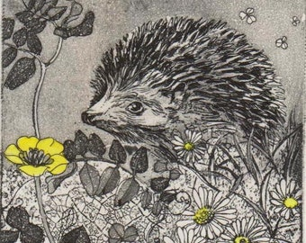 Original etching of a hedgehog by Moira McTague