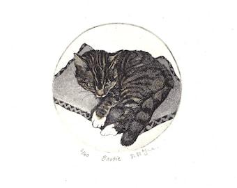 Cat, Original Etching, Bartie