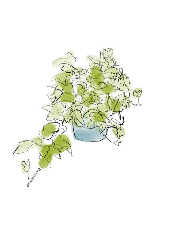 Instant Download Ivy Plant Botanical Print Ivy Print  Printable Wall Art Botanical Wall Art Downloadable Print Plant Poster