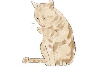 bathing tabby, cat taking a bath digital art print