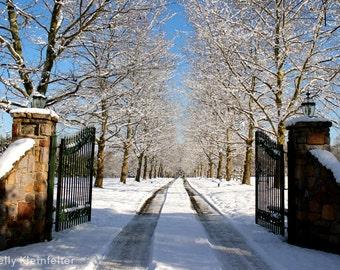 Winter Wonderland // Ivyland, PA