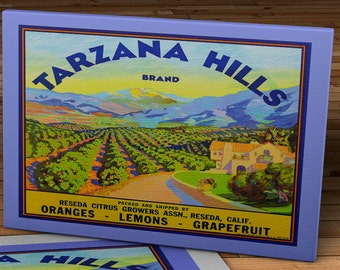 1940 Vintage Produce Label - Tarzana Hills_Brand - Canvas Gallery Wrap -  14 x 12 #PL002