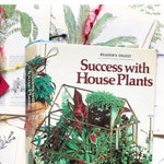 Book Pages Success With House Plants 1979 Science  Vintage Plant Illustrations Vintage Gardening Book Page Bundles Flower Book Pages