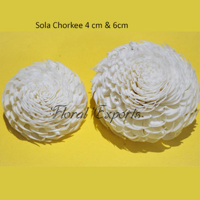 \u2013 For 100 flowers Sola Chorkee Our Minimum Order Quantity is 10 in mixing quantity