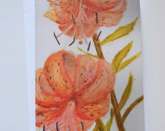 Tiger Lily Watercolor, Pencil + Pastel Notecard (single card)