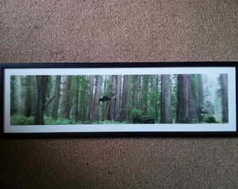 Star Wars, Endor Planet,  Chase on Speeder Bikes & Ewok, Print, Small
