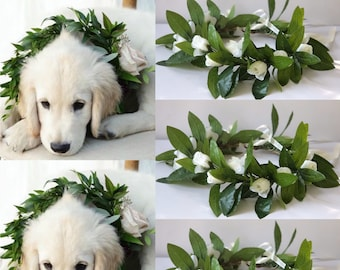 Large dog wedding outfit, Dog wedding collar, Dog Wedding Attire, Dog Wedding Tuxedo, Dog wedding Leash