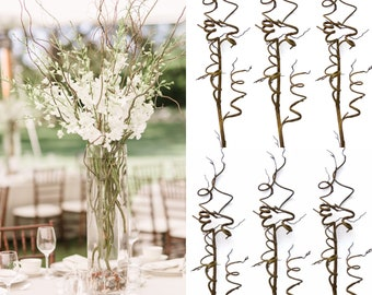 """27"""" Willow branches Wired Twig Branches  willow tree branches Curly Willow Branches"""