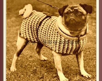 Vintage 1950 s Knitting Pattern to make A Knitted Dog Coat or Jumper in  Aran or Chunky in 3 Sizes by PDF for Immediate Digital Download c464fc3e3a