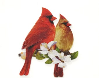 75e0cae74f0 Beautiful Birds