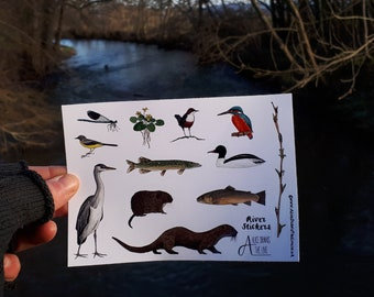 River species sticker sheets by Alice Draws The Line; great for children's birthday party bags.A6 sheets of flora and fauna from the river